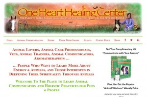 One Heart Healing Center